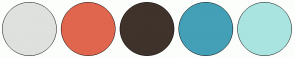 Color Scheme with #DEE1DE #E1664E #3F332C #43A0B7 #AAE4E0