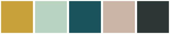 ColorCombo13881