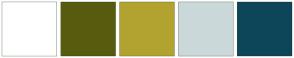Color Scheme with #FFFFFF #575B0E #B2A330 #CAD8D9 #0D4659