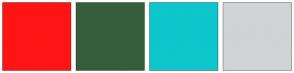 Color Scheme with #FF1414 #355E3B #0EC6CC #D1D4D4