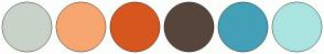 Color Scheme with #C9D2C8 #F7A670 #D7561F #56453B #43A0B7 #AAE4E0