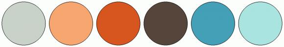 ColorCombo13907