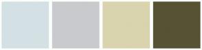 Color Scheme with #D3E1E4 #C9CACE #D9D4AE #575234