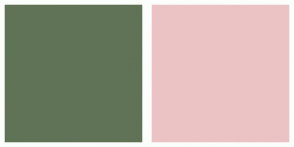 Color Scheme with #607356 #EBC3C5