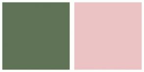 Color Scheme with #607356 #EBC3C5