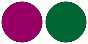 Color Scheme with #990066 #006633