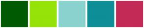 Color Scheme with #005A01 #95E308 #8AD2CE #0E8E96 #C42A56