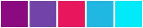 Color Scheme with #8B0A80 #7144A8 #E8175D #20B7E2 #00EBFA