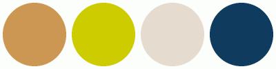 ColorCombo3137