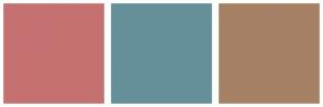 Color Scheme with #C67171 #65909A #A68064