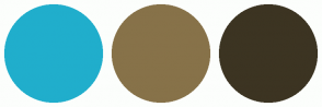 Color Scheme with #20AECC #877249 #3C3422
