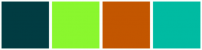 Color Scheme with #013C42 #8AF72E #C35600 #00BBA2