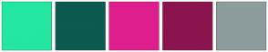 Color Scheme with #24E7A2 #0C5A50 #DF1ED9 #8B146D #8D9C9D