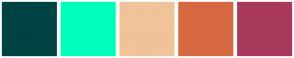 Color Scheme with #004343 #00FFBB #F0C39A #D66840 #A93A5C