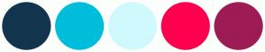 Color Scheme with #13354D #00BEDB #CFF9FD #FF004F #9D1C55