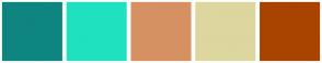 Color Scheme with #0E8581 #1FE1BF #D69163 #DDD69E #A94300