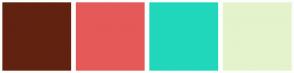 Color Scheme with #622210 #E55959 #20D7BB #E4F3CC