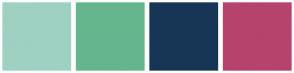 Color Scheme with #9ED1C1 #65B68E #173655 #B6436C