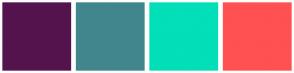 Color Scheme with #55134E #41868D #03DFB8 #FF5151