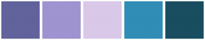 Color Scheme with #62639C #9F93D0 #DAC8E8 #308DB6 #194D60
