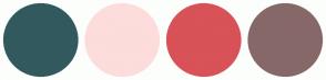 Color Scheme with #325A5E #FDDCDC #D85258 #876868