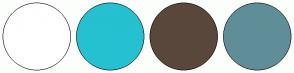 Color Scheme with #FFFFFF #25C1D0 #5A473B #608E98