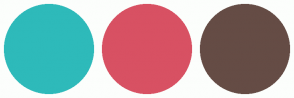Color Scheme with #2EBABA #D85163 #654C45
