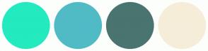 Color Scheme with #24EABF #50BBC5 #4A7470 #F6EDD9