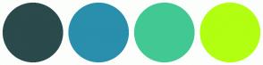 Color Scheme with #2A4A4B #298FAC #42C993 #B2FF11