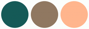 Color Scheme with #155A57 #907861 #FFB58D
