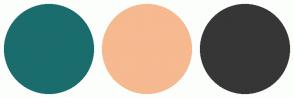 Color Scheme with #1B6D6D #F6B990 #363636