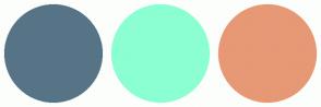 Color Scheme with #577487 #8BFFD1 #E79875