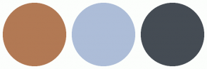 Color Scheme with #B27954 #ADBDD8 #454C54