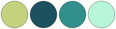 ColorCombo16257