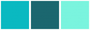 Color Scheme with #0AB9C1 #1B676F #7AF4DE