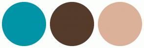 Color Scheme with #0095A6 #543B2A #DBB199