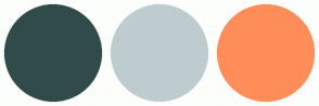 Color Scheme with #304B49 #BECCD0 #FF8D5A