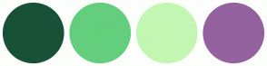 Color Scheme with #185138 #63CE7D #C3F6B3 #94629F