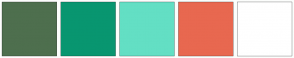 Color Scheme with #4E6F4E #089670 #63DFC4 #E86850 #FFFFFF