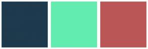 Color Scheme with #1E3A4D #63ECB0 #BA5656