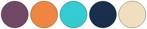 Color Scheme with #704863 #EE8641 #34CBD2 #18304B #F0DFBF