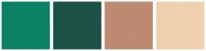 Color Scheme with #0B8164 #1C5346 #BD8A72 #EFD1AF