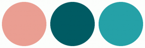 Color Scheme with #EA9E92 #005B63 #25A1A7