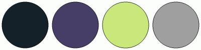ColorCombo16498