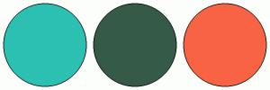 ColorCombo16508