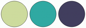 Color Scheme with #CDDB9D #30A9A2 #413E5E