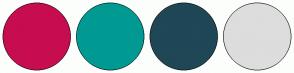 Color Scheme with #C70D4F #009A93 #1F4756 #DDDDDD