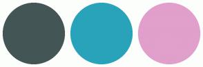 Color Scheme with #445555 #29A3BA #E19FCB