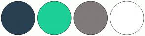 Color Scheme with #284051 #1CD098 #807A7A #FFFFFF