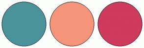 Color Scheme with #4B939A #F69479 #CE3B5C